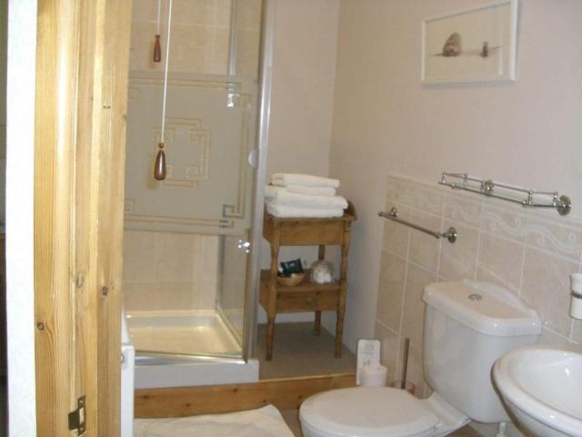 Glanyrynys B&B en-suite shower room